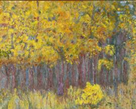 Splendor of Yellow